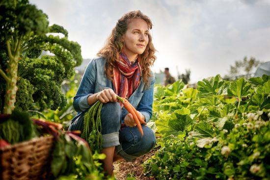 Your joy of harvesting won't be far away...